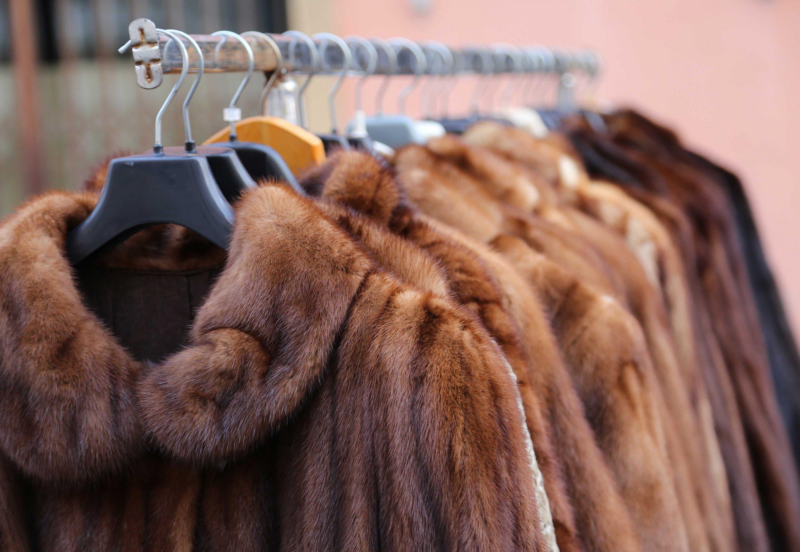 Szőrme kabát alakítás